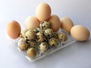 proteínas para bebés