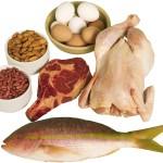 Ingesta diaria de proteínas – ¿Qué hace la Proteína y Por qué lo necesita?