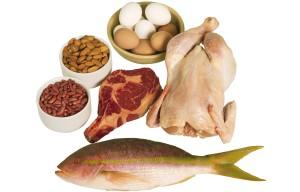 ingesta diaria de proteinas