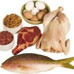 Conociendo más de la proteina y los alimentos que lo contienen