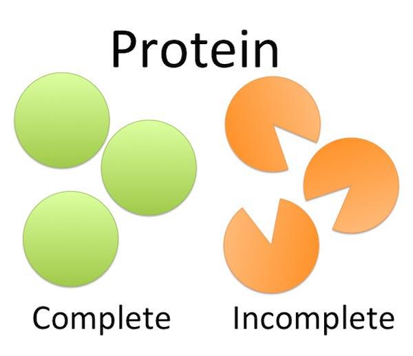 proteinas completas