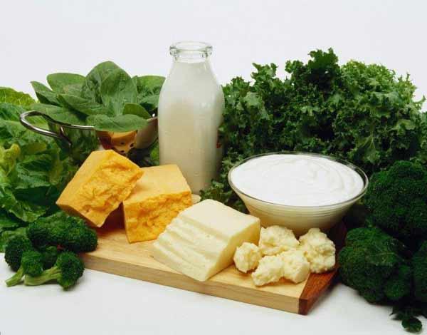 alimentos ricos en calcio