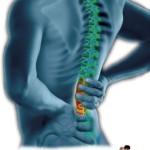 Estiramientos de espalda para libre de dolores musculares