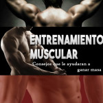 Consejos para el entrenamiento muscular