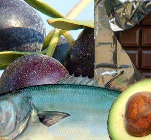 Alimentos ricos en grasas que son saludables