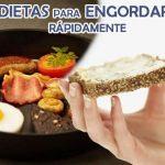 Dietas para engordar rápidamente – Lo que se debe comer