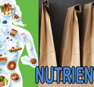 ¿Qué son los nutrientes y sus funciones? – Qué nutrientes te falta?