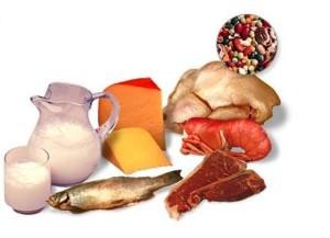 proteínas engordan