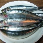 Uno de los alimentos saludables las Sardinas
