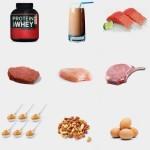 La importancia de la proteina y sus razones