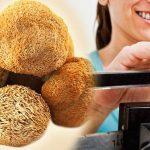 Remedios para engordar rápido, engorde desde casa